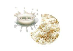 牛乳と糀から生まれた新しい牛乳甘酒(発酵乳飲料)